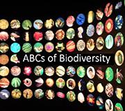 ABC Of Biodiversity
